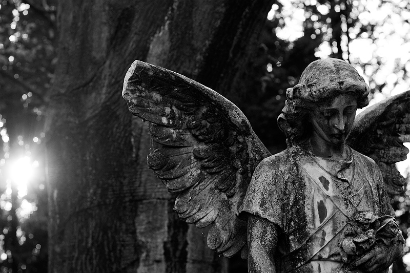 begraafplaats Maastricht-11